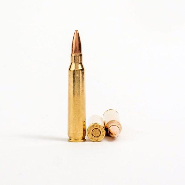 PMC 223A 223 Remington 55 Grain FMJ Rounds