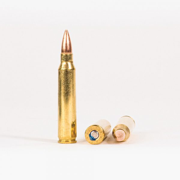 223 Rem 55gr FMJ Federal American Eagle AE223 Ammo Rounds