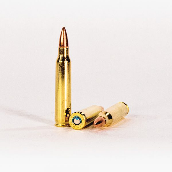 223 Rem 62gr FMJ Federal American Eagle AE223N Ammo Rounds